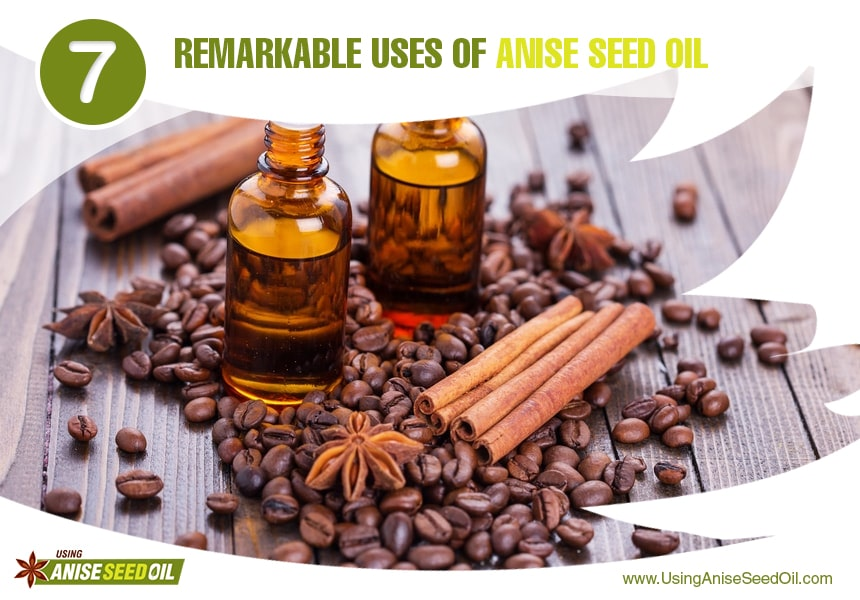 anise seed oil for circulation