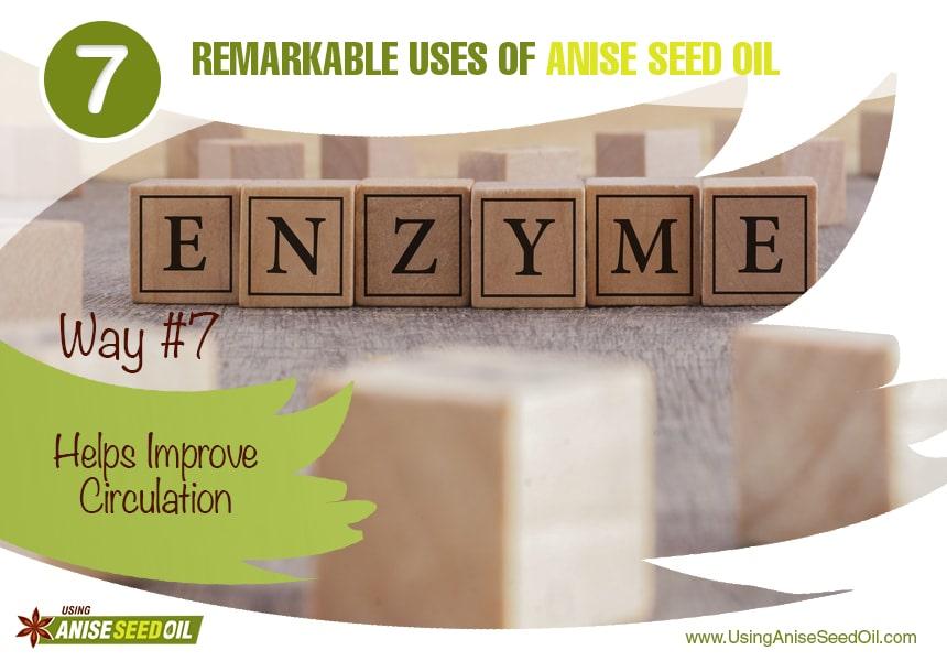 anise seed oil bug spray